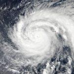 【お庭の台風対策】台風が来る前に点検しよう!